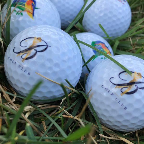 UV printed golf ball